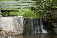 Bowering Park Waterfall