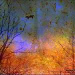 """""""Love Survives"""" by JamesHanlon"""