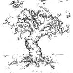 """gnarled tree"" by gfxdug"