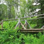 """Bridge to Nature"" by ekewilson"