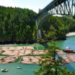 """Tugboat Under Deception Pass Bridge"" by CaptureLife"