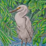 """Egret bird"" by thuraya"