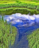 Marshland Cloud Reflection