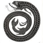 """Boa Fish"" by KenRileyArt"