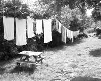 DRYING DAY.