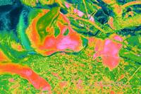 Heat Colors Photo of Painting