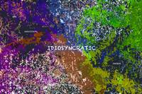 Idiosyncratic