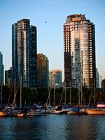False Creek Condos