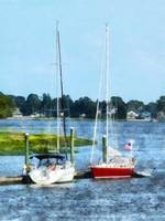 Two Docked Sailboats Norwalk CT