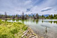 Mount Moran and Beaver Dam - A different View