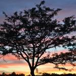 """""""Sunset over Fairfield Cemetery"""" by prbanana"""