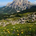 """Summer panorama on the dolomites"" by FrancescoMalpensi"