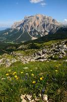 Summer panorama on the dolomites