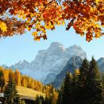 """Autumn on the dolomites mountains (vertical)"" by FrancescoMalpensi"