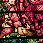 """""""The Pelicans, a stained glass design by Edward Bur"""" by neilepi"""