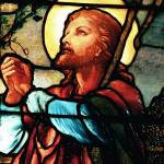 """Jesus The Good Shepherd in stained glass"" by neilepi"