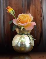 Sunset Roses in Brass Vase