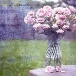 """""""Bouquet of roses"""" by MarinaPhotography"""