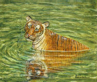Peaceful Tiger in Jungle Pool Painting