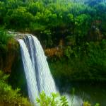 """Wailua Falls"" by lifescaping"