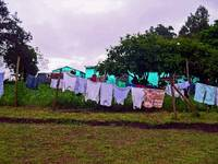 South Africa Clothes Drying on Clothesline