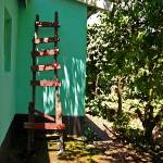 """South Africa  Ladder Leaning on House"" by KsWorldArt"