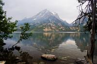 Jenny Lake Dawn