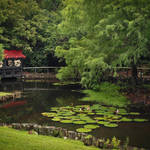 """Tranquil Garden"" by julieandel"