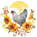 """Plymouth Rock Hen"" by Sharon_himes"
