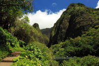 Iao Needle - Iao Valley