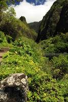 A Bridge To The Iao Needle