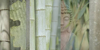 Buddha & Bamboo Collage