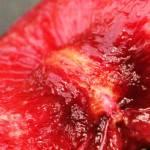 """Cherry"" by PatrickAltman"