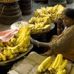 """""""Anyone for bananas?"""" by MiniArora"""