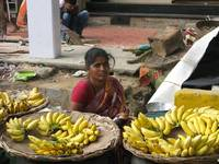 bananas for sale