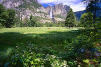 Yosemite Valley Spring