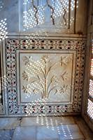 Taj's Intricate Inside Detail