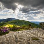 """Blue Ridge Mountains Landscape - Roan Mountain"" by DAPhoto"