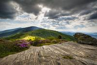 Blue Ridge Mountains Landscape - Roan Mountain