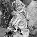 """Broken Cherub"" by WildAboutNaturePhotography"