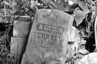 Abandoned tombstone . . .