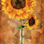 """""""Sunflower Stand"""" by ScovoPhoto"""
