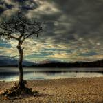 """Milarrochy Bay, Loch Lomond."" by paulnfe_photography"
