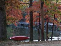 Cumberland Mountain State Park - Canoe