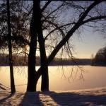 """Hinkley Preserve - Sunrise"" by RichardBaumer"