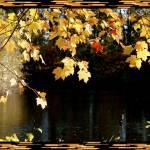 """Autumn Evening"" by BlueRoosterGraphix"