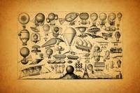 Balloons - Late 19th Century Print