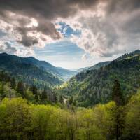 Great Smoky Mountains Landscape Photography - Spri Art Prints & Posters by Dave Allen