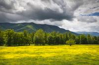 Cades Cove Great Smoky Mountains National Park TN