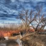 """""""Winter Creek in Colorado"""" by merttu"""
